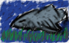 shark shark shark shark shark!